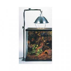 Eclairage du terrarium : quel équipement choisir ?