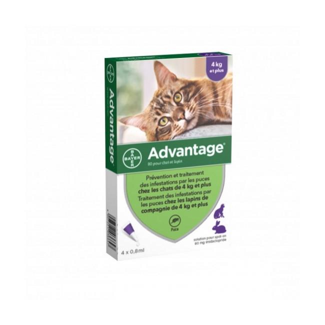 Advantage 80 Anti-puces pour chats > 4 kg