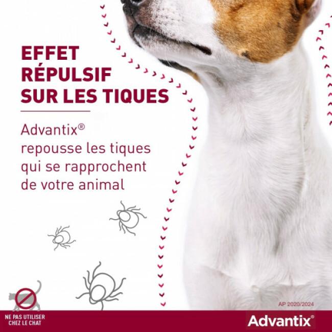Advantix soin antiparasitaire pour chiens