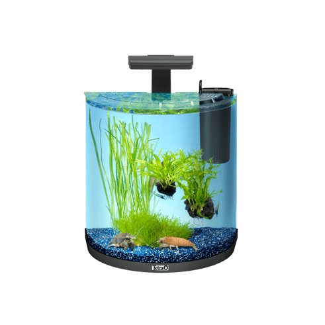 Aquarium AquaArt Explorer Tetra