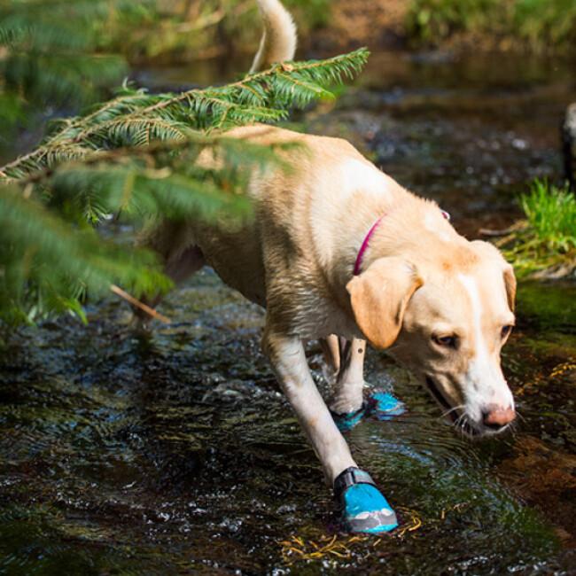 Bottine de sport Ruffwear Grip Trex pour chien
