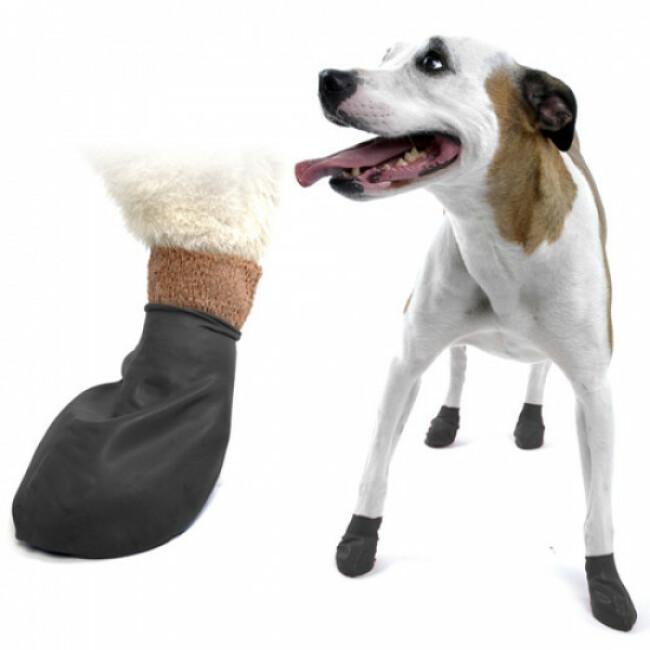 Chaussette Pawz  noire protection pour coussinets de chien