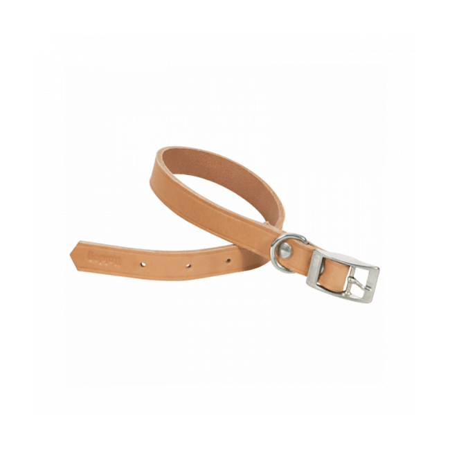 Collier pour chien en cuir naturel Chapuis Sellerie