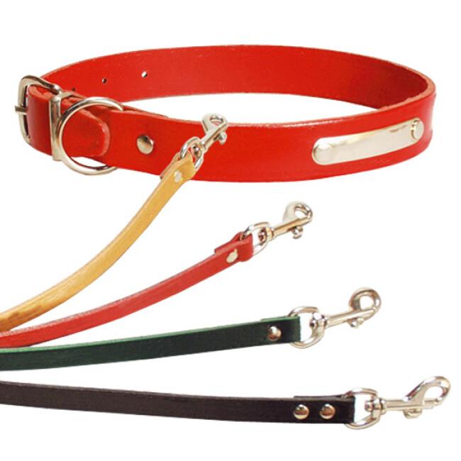 Collier réglable en cuir simple pour chien