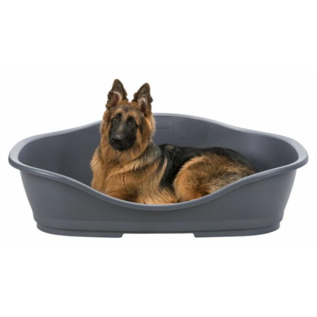 Corbeille plastique pour chien & chat