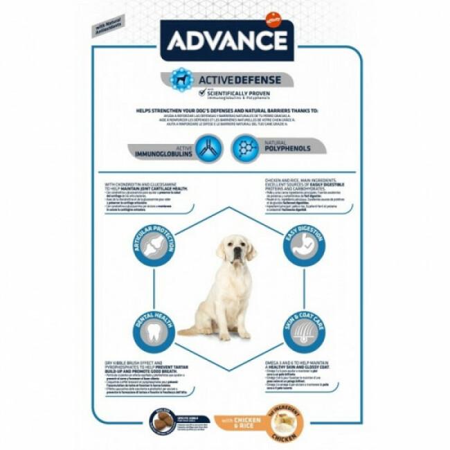 Croquettes Advance pour chiens Maxi Adult Sac 14 kg