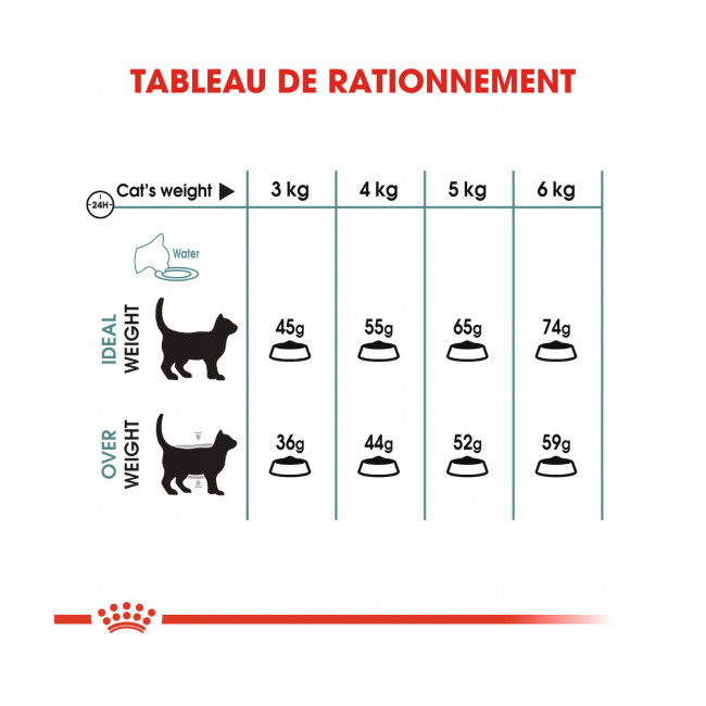 Croquettes pour chat adulte d'intérieur Royal Canin Hairball Intense 34