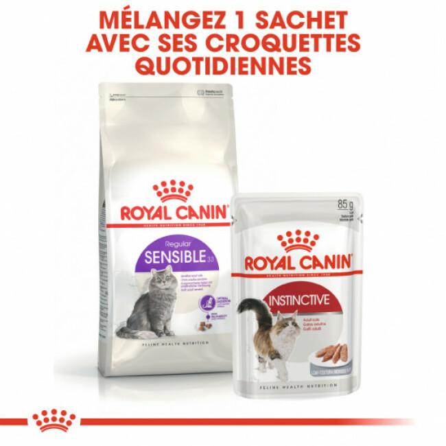 Croquettes pour chat adulte Royal Canin digestion sensible 33