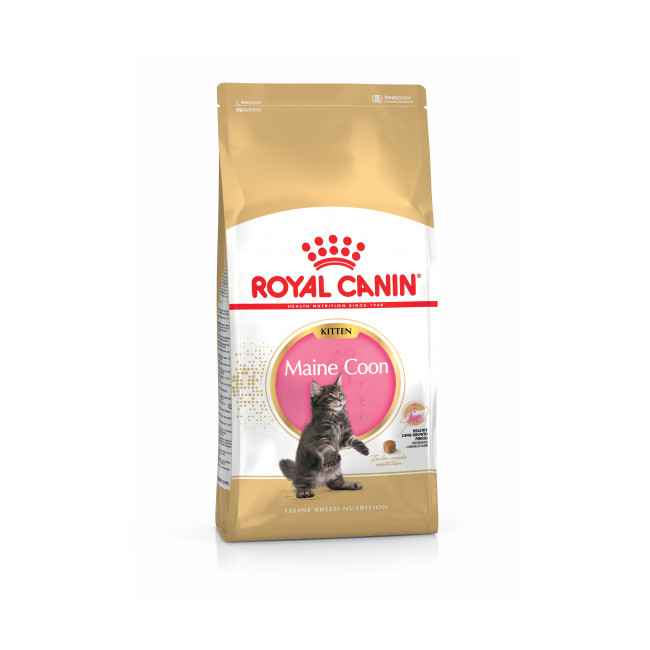 Croquettes pour chaton Royal Canin Kitten Maine Coon