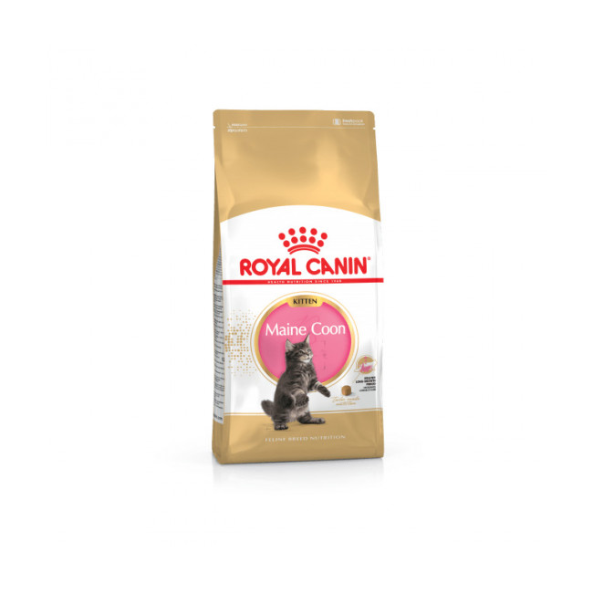 Croquettes pour chaton Royal Canin Maine Coon Kitten