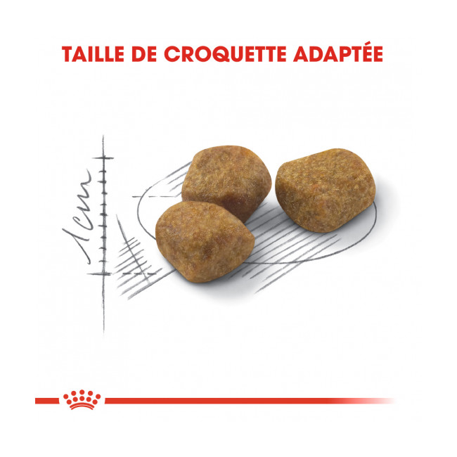 Croquettes pour chats Royal Canin FIT 32