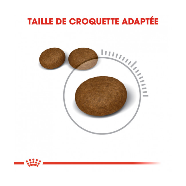 Croquettes pour chats Royal Canin Hair & Skin Care