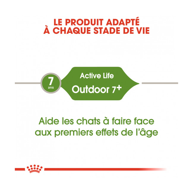 Croquettes pour chats Royal Canin Outdoor 7+