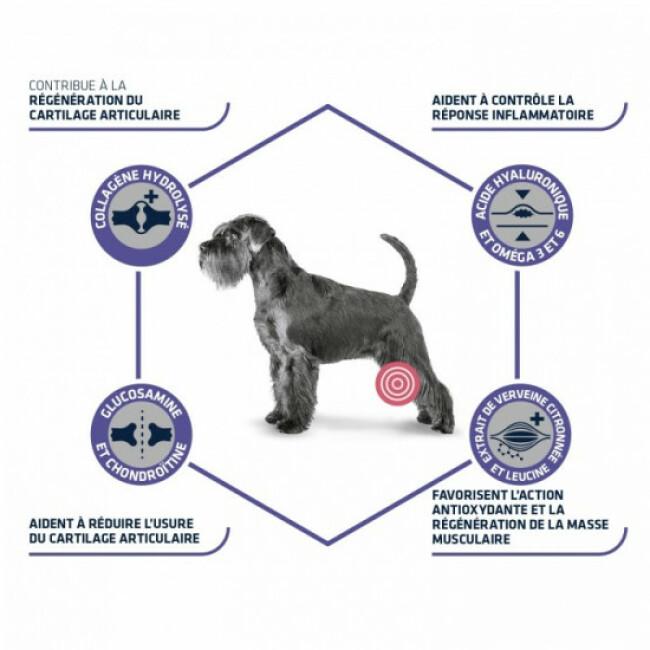 Croquettes pour chien adulte Advance Veterinary Diets Articular Care + 7 ans