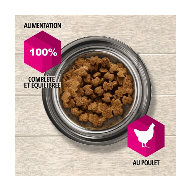 Croquettes pour chien adulte articulations sensibles Eukanuba Daily Care