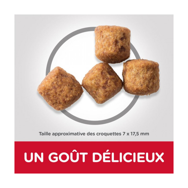 Croquettes pour chien adulte grandes races Hill's Science Plan Light