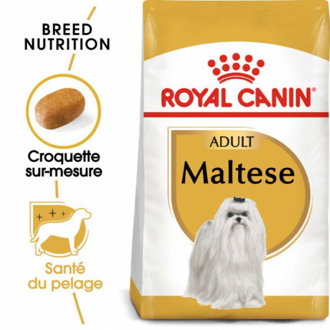 Croquettes pour chien adulte Royal Canin Bichon Maltais Sac 1,5 kg