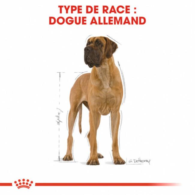 Croquettes pour chien adulte Royal Canin Dogue Allemand Sac 12 kg