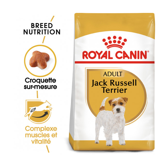 Croquettes pour chien adulte Royal Canin Jack Russel