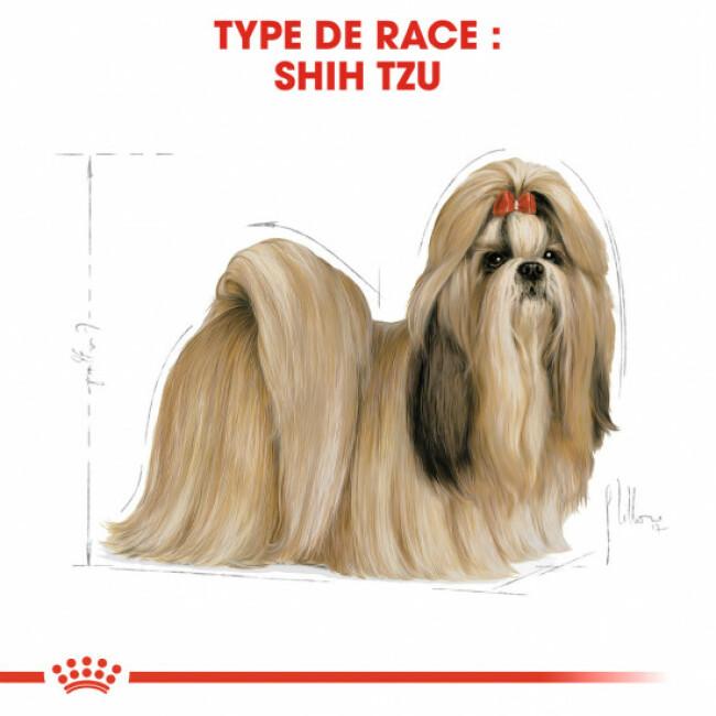 Croquettes pour chien adulte Royal Canin Shih Tzu 24