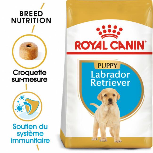 Croquettes pour chiot Labrador Retriever Puppy Royal Canin
