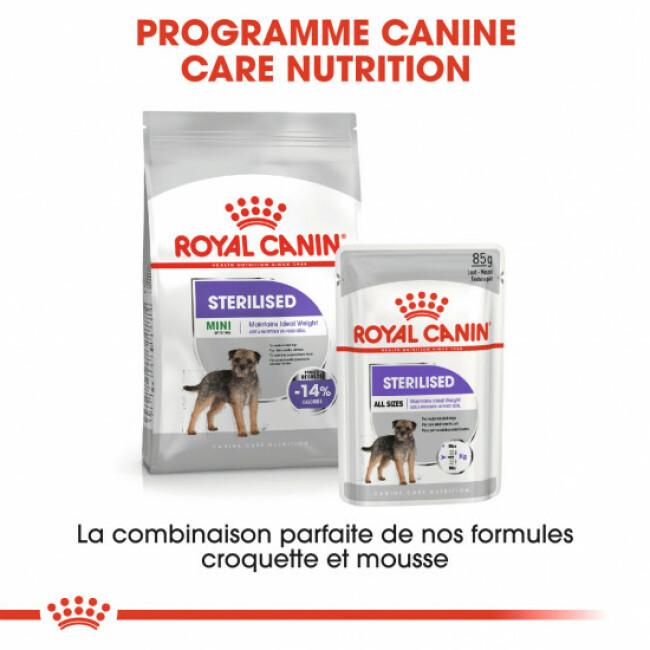 Croquettes pour chiens adultes stérilisés Royal Canin Mini Sterilised