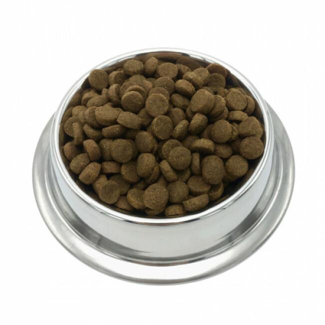 Croquettes pour chiens de moyenne race (15kg à 30 kg) aux protéines d'insectes
