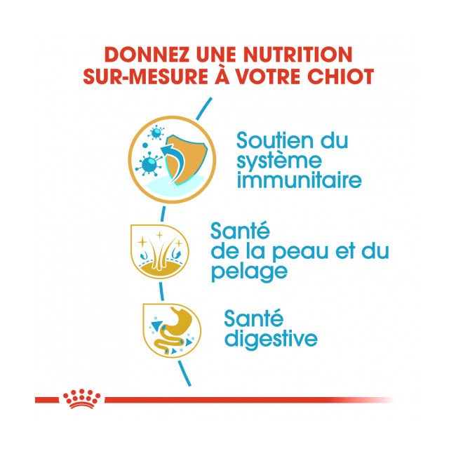 Croquettes pour chiot Cocker Royal Canin Breed Junior Sac 3 kg