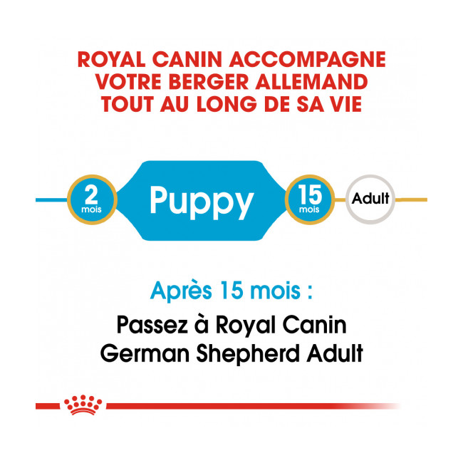 Croquettes Royal Canin Berger Allemand Puppy