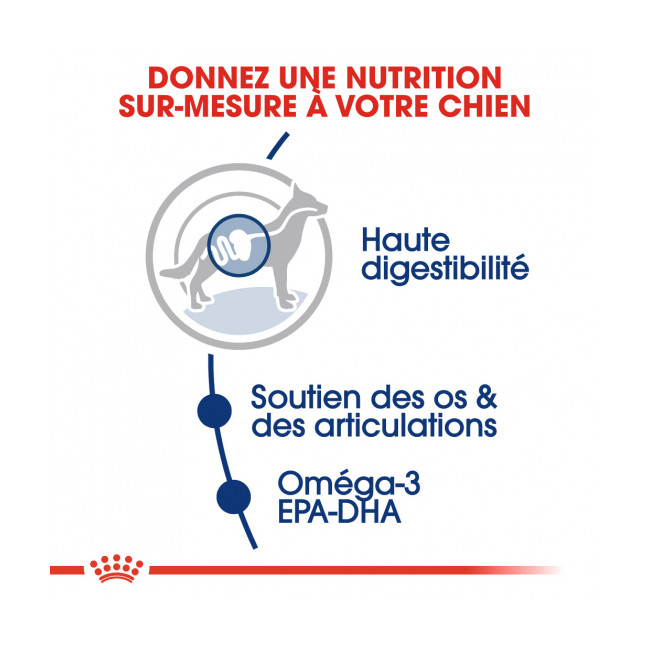 Croquettes Royal Canin Maxi Adulte