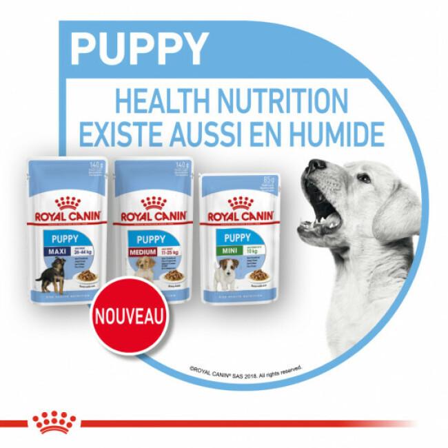 Croquettes pour chiot Royal Canin Mini Puppy