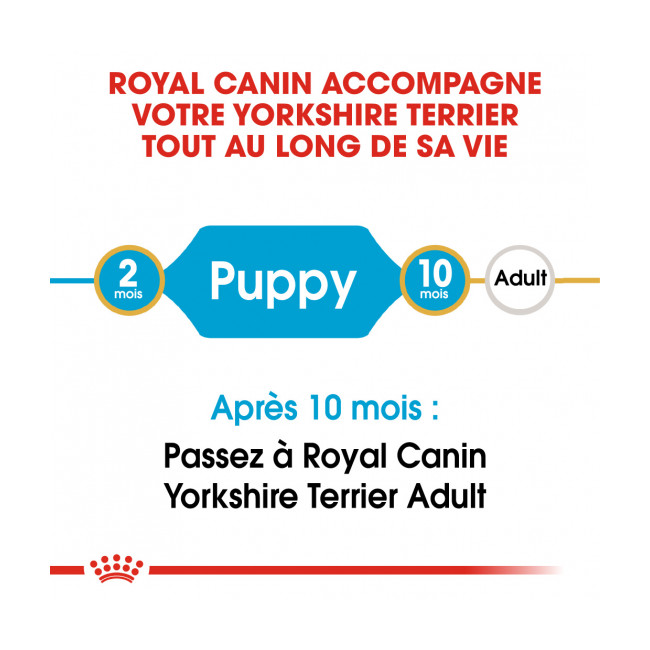 Croquettes Royal Canin Yorkshire Terrier Junior
