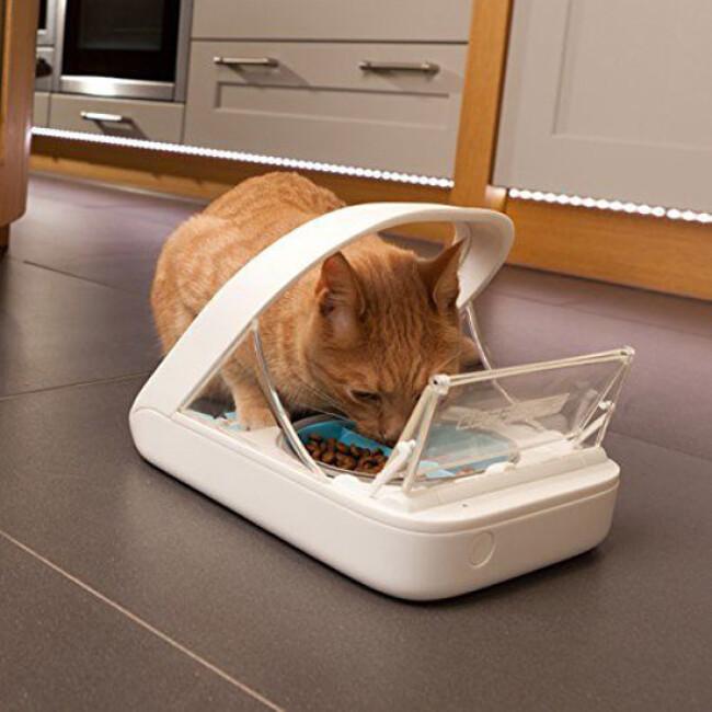 Distributeur  nourriture à puce électronique Surefeed pour chat