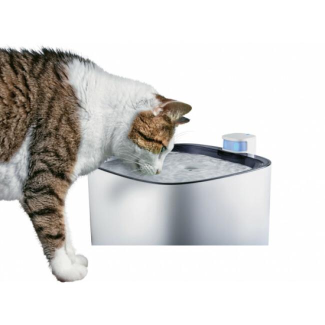 Fontaine à eau Iguazu silencieuse pour chat et petit chien