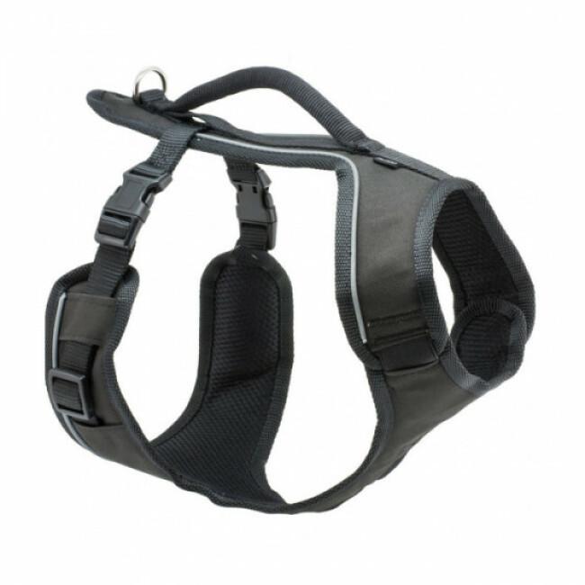 Harnais pour chien EasySport Petsafe noir