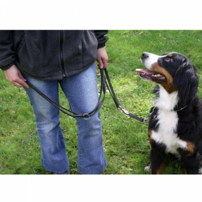 Laisse cuir chromé noir pour chien