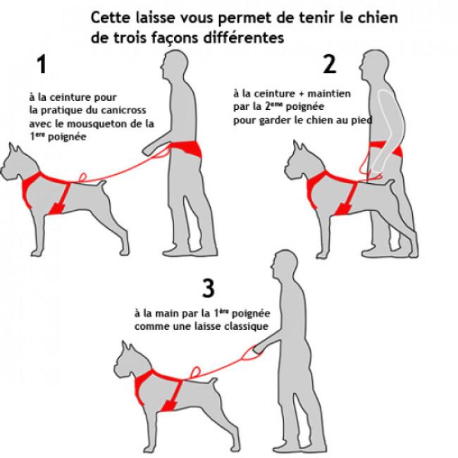 Laisse sport extensible Scoubi pour chien