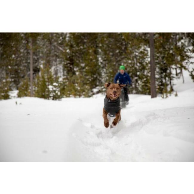 Pull léger et chaud pour chien Climate Changer™ Ruffwear