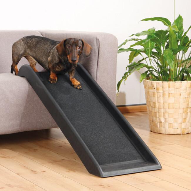 Rampe d'accès Canis-Rampe™ pour chien et chat