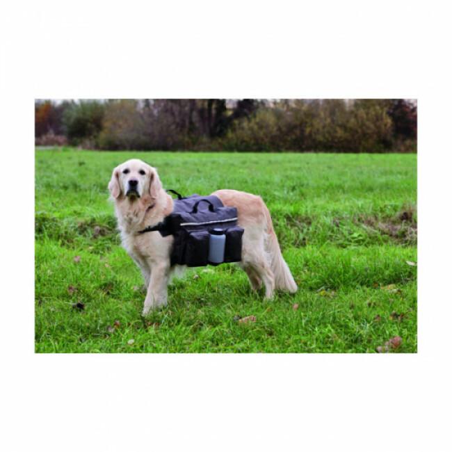 Sac à dos d'activité Authentic Dog pour chien Karlie