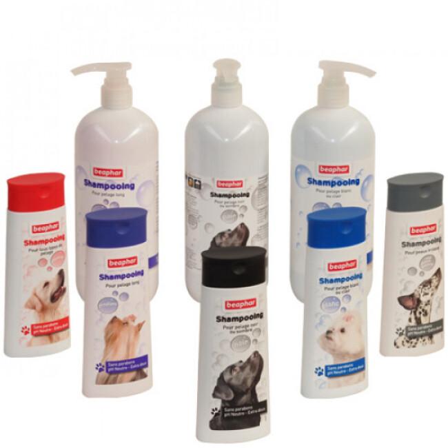 Shampoing  économique Beaphar pour chien et chat