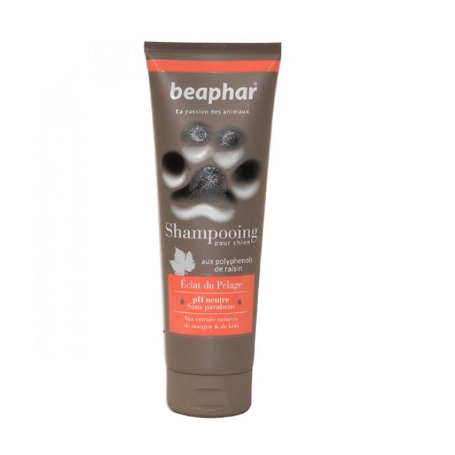 Shampoing revitalisant et éclat du pelage Empreinte de Béaphar pour chien