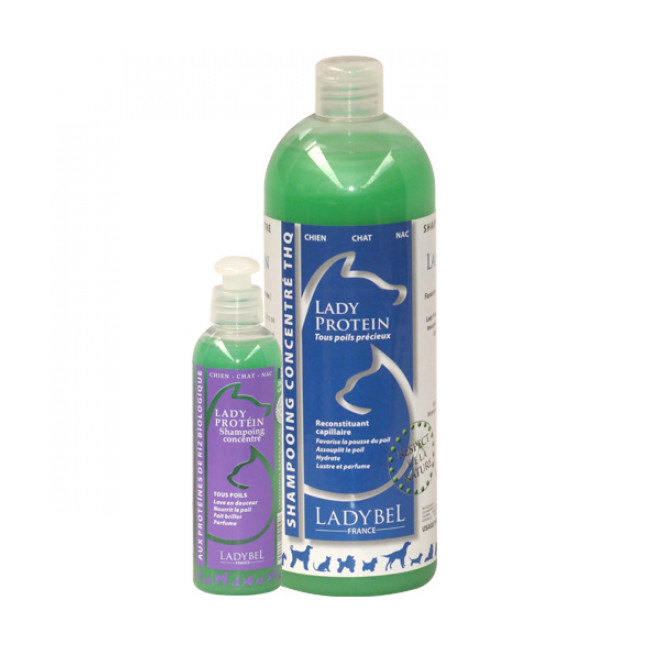 Shampooing Ladybel aux protéines pour fourrure précieuse de chien, chat et NAC