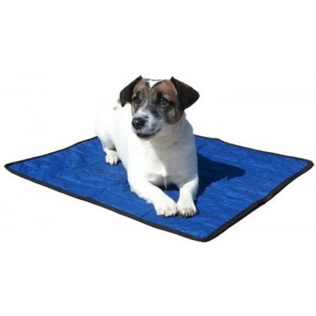 Tapis rafraîchissant pour chien Aqua Coolkeeper