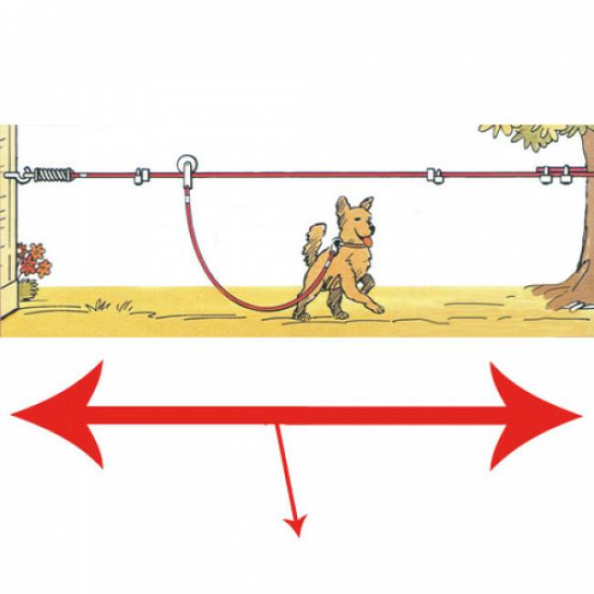 Trolley coulissant pour chien