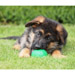 Image 3 - Balle Everlasting très résistante pour chien