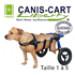 Image 1 - Chariot Cani-Cart Liberty ® Walkin Wheels pour chiens handicapés ou paralysés