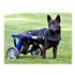 Image 6 - Chariot Cani-Cart Liberty ® Walkin Wheels pour chiens handicapés ou paralysés