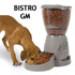 Image 1 - Distributeur programmable croquettes Bistro pour chien et chat