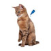 Image 3 - Pipettes antiparasitaires Fiprotect spot on Beaphar pour chat